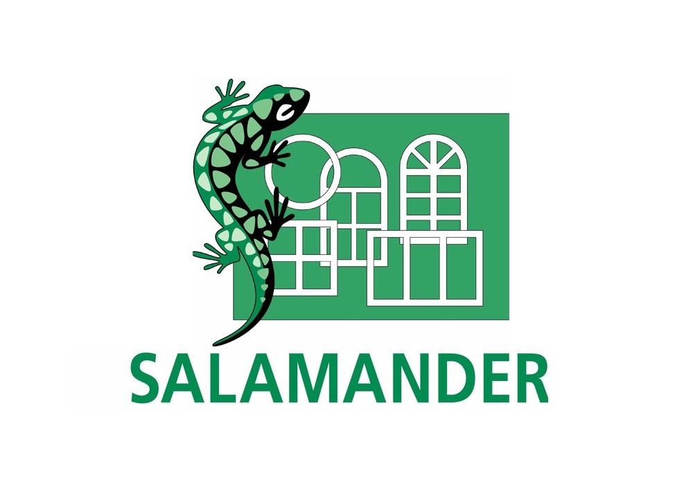 Окна и профиль Salamander